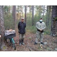 Радіоактивні грибники продовжують свою чорну справу